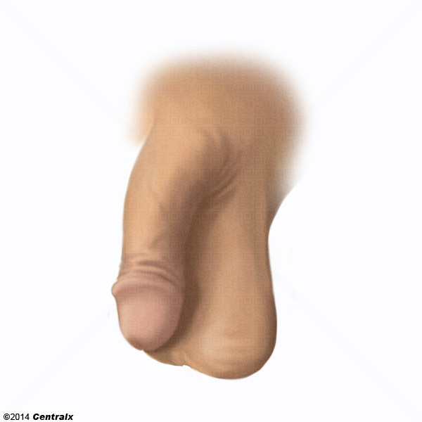 Shaved genitals image